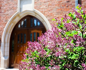 Rodman Hall doors that face the quad showing trees with purple buds