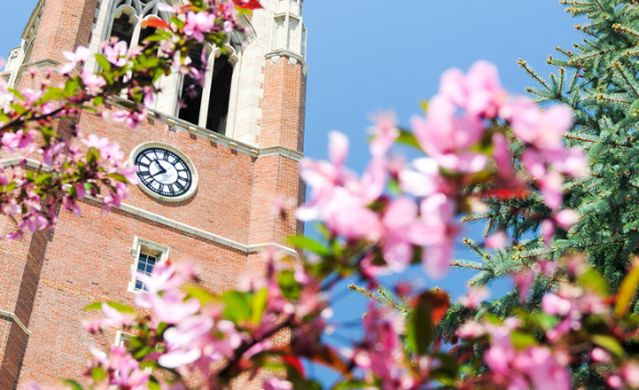Image of clock tower on campus